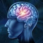 brain optimization