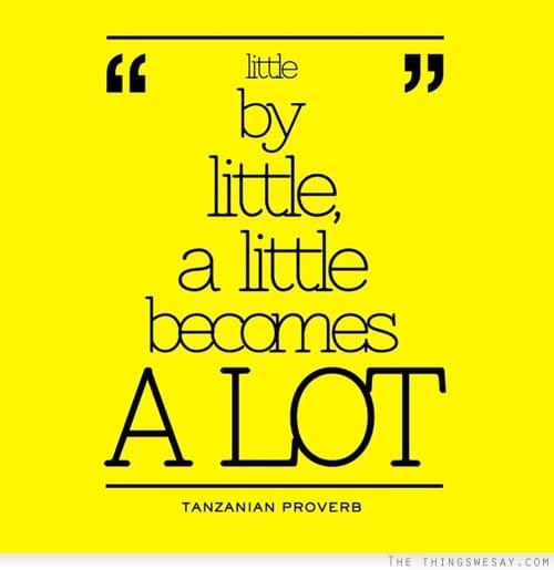 little by litte a little means a lot