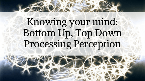 Top Down Processing