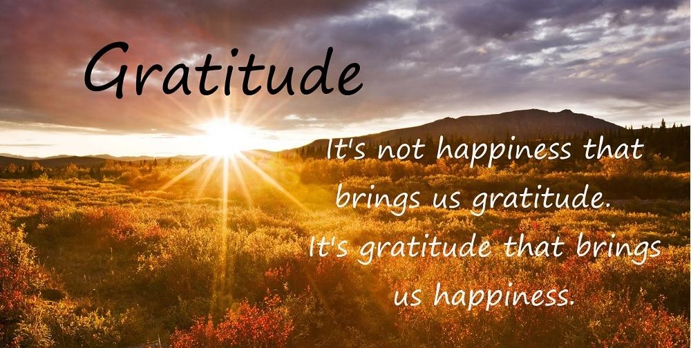 gratitude happiness 2